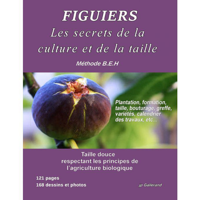Figuier: Les secrets de la culture et de la taille (version e-book)