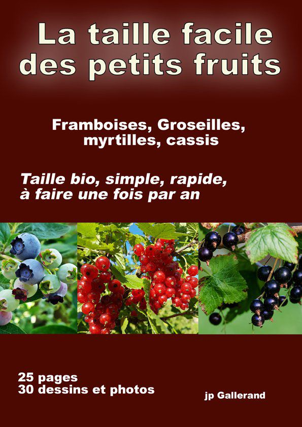 La Taille Facile Des Petits Fruits E Book