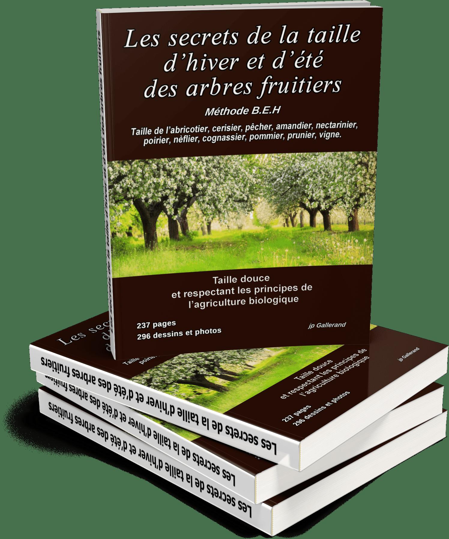 Arbre Fruitier D Intérieur les secrets de la taille d'hiver et d'été des arbres